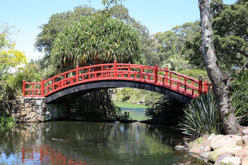 bridge in Wollongong botanic gardens